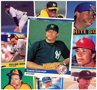 Click the Goose Gossage Card Collage for the Bio page.